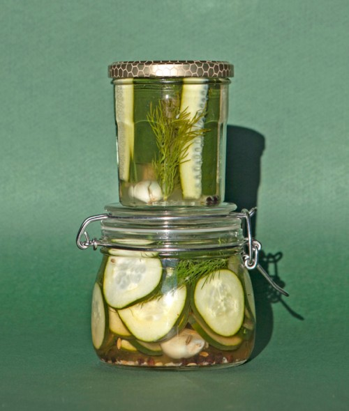 Dill Pickles! Cetrioli sott'aceto all'aneto